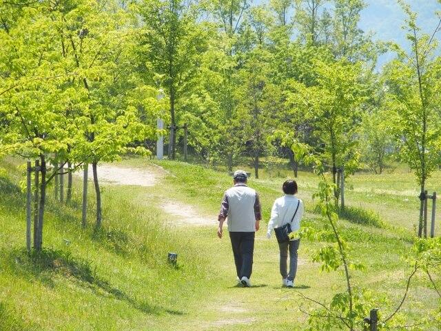 筋力低下を防ぐ高齢者の運動